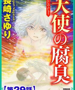 天使の腐臭(分冊版)の29巻(コミック)をRawQQやZIPの他に無料で安全に読むには?